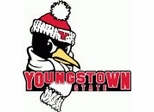 Youngstown State Penguins College Sports Furniture Collection