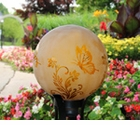 "10"" Etched Gold Butterfly Globe"