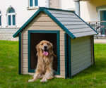 EcoConcepts Bunk House Dog House (X-Large)