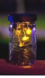 Flickering LED Fireflies Lantern (Set of 2)