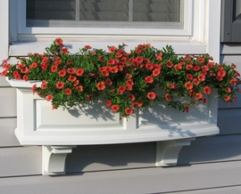 "Nantucket 36"" Window Box"