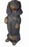 "Sandicast Black Dachshund Statue  Sitting Pretty 17""H"