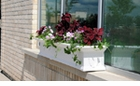 Yorkshire 7' Window Box