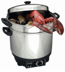 Food Steamers  and Deep Fryers / Thermal Cookers