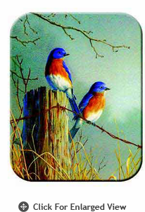 McGowan Mfg TUFTOP Tempered Glass Cutting Board Bluebirds