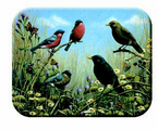 McGowan Mfg  TUFTOP Tempered Glass  Cutting Boards  Blackbird and Bullfinch