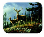 McGowan Mfg  TUFTOP Tempered Glass  Cutting Boards  Deer - Autumn Whitetail