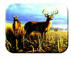 McGowan Mfg  TUFTOP Tempered Glass  Cutting Boards  Deer - Local Legend