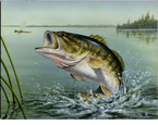 McGowan Mfg  TUFTOP Tempered Glass  Cutting Boards  Large Mouth Bass