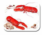 McGowan Mfg  TUFTOP Tempered Glass   Cutting Boards  Lobster