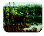 McGowan Mfg  TUFTOP Tempered Glass  Cutting Boards   Moose