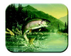 McGowan Mfg TUFTOP Tempered Glass Cutting Boards Rainbow Trout