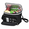 Picnic at Ascot  Bold Lunch Cooler  With Accessories