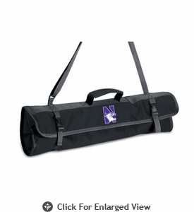 Picnic Time BBQ Tote Northwestern University Wildcats