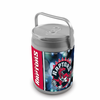 Picnic Time NBA - Can Cooler Toronto Raptors