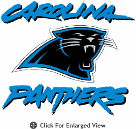 Picnic Time NFL Carolina Panthers