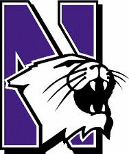 Picnic Time Northwestern University Wildcats Branded Items