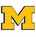 Picnic Time  University of Michigan Wolverines  Branded Items