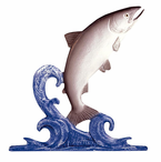 "Whitehall  Rooftop or Garden  30"" Trout Weathervanes"