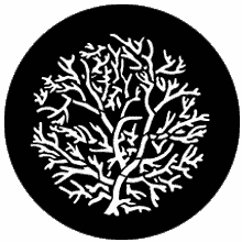 Rosco Bare Branches Reversed Standard Steel Gobo 77778