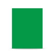 Westcott 10'x12' Chroma Key Green Screen Curtain 5779