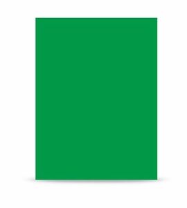 Westcott Chroma Key Green Screen 10'x24', 5879
