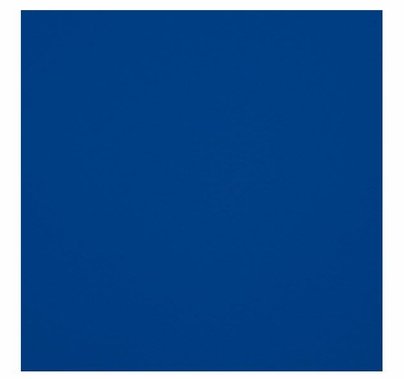 Westcott Photo Basics 9'x10' Chroma Key Blue Screen, 131