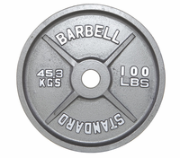 100lb Gray Olympic Weight Plate - Pair