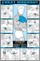 Chest Workout Poster - Laminated