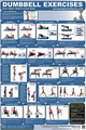 Dumbbell Exercise Poster 1