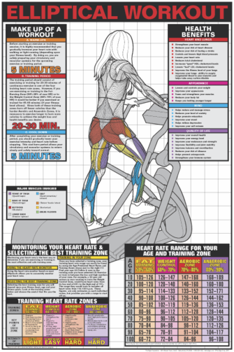 Elliptical Workout Poster - Laminated