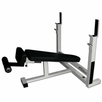 Legend Fitness Decline Olympic Weight Bench 3109