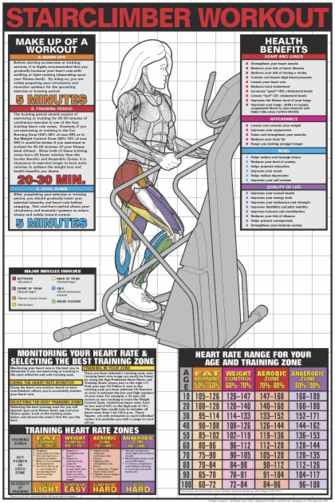 Stairclimber Workout Poster - Laminated