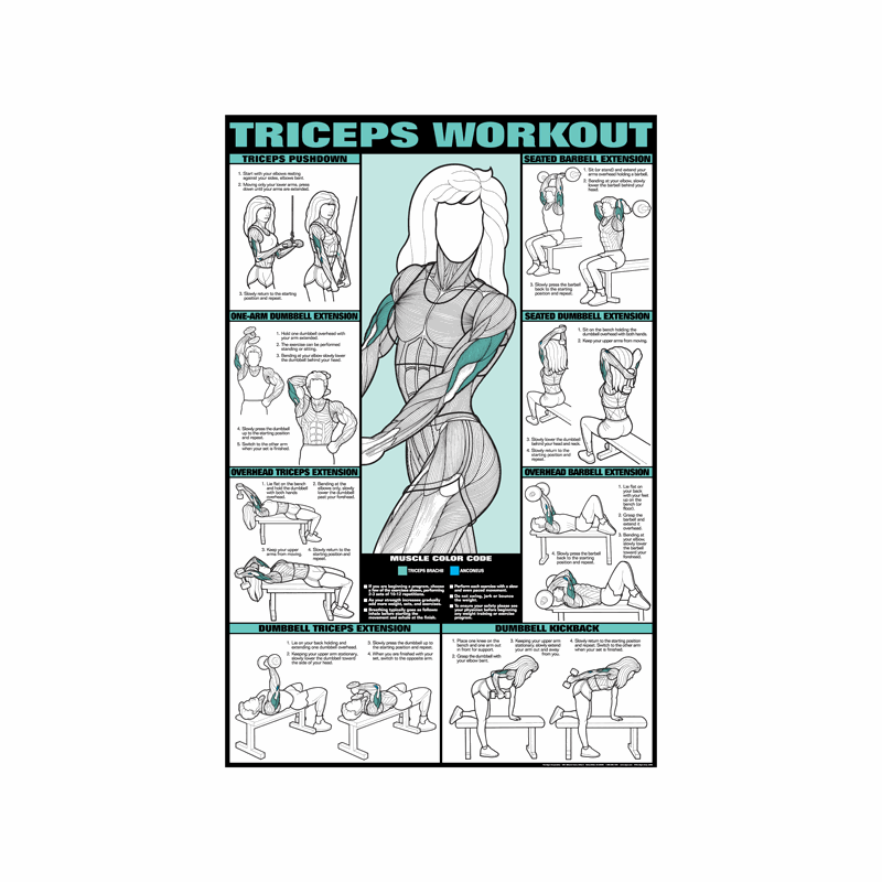 Tricep Workout Poster Laminated