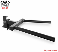 Valor Fitness RG17 Dip Attachment