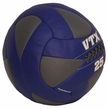 VTX 25lb Leather Wall Ball