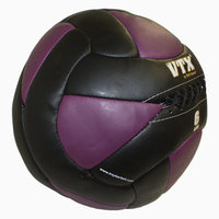 VTX 6lb Leather Wall Ball
