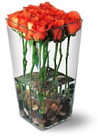 Dozen Roses w. Pebbles inside the Vase