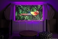 """Elite Screens Aeon Ambient Light Rejection Screen, 84"""" w/ Backlight Kit"""