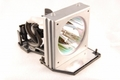 Optoma S316, X316, W316, DX346, BR323, BR326 Replacement Projector Lamp SP.8VH01GC01