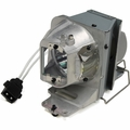Optoma W351, W316ST, X351, X316ST, EH341, DH1012 Replacement Projector Lamp - BL-FP210A