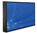 "Peerless 55"" UV2 Outdoor TV - CL-5565"