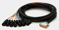 Roland 8-ch. D-Sub to XLR Male Fanout Cable - SC-A0805DM