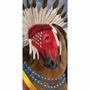 Horse Of A Different Color Pawnee Warrior Canvas Wall Art