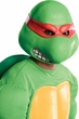 Teenage Mutant Ninja Turtles Raphael Overhead Adult Mask