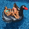 Giant Black Swan Pool Float