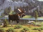 "Tucker Smith Hand Signed Limited Canvas Giclee:""Moose at Dean Lake"""