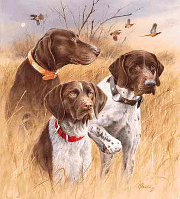 Jim Killen Limited Edition Print Great Hunting Dogs
