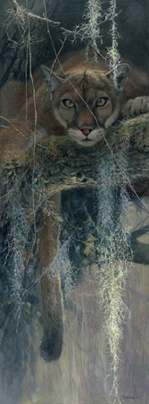 """John Seerey-Lester Hand Signed and Numbered Limited Edition: """"Treed"""""""