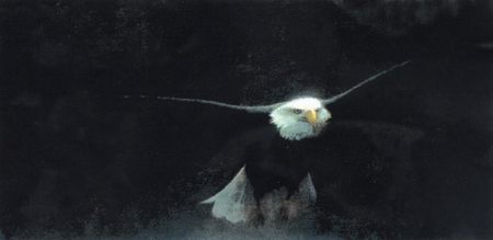"John Seerey-Lester Limited Edition Print:  ""Freedom ll"""
